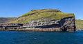 Acantilados de Heimaey, Islas Vestman, Suðurland, Islandia, 2014-08-17, DD 059.JPG
