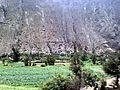 Acobamba District, Peru - panoramio - Tours Centro Peru (6).jpg
