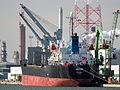 Adaline, IMO 9246920, Callsign TCSP7, Leopolddok, Port of Antwerp.JPG
