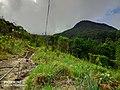 Adams peak foot path from kuruwita.jpg