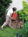 Adding urine to compost heap (2946283239).jpg