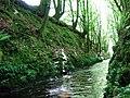 Afon Anghof - geograph.org.uk - 436376.jpg