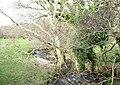 Afon Desach at Pont Faen - geograph.org.uk - 354232.jpg