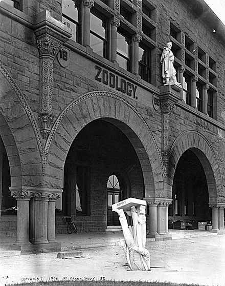 "After the 1906 San Francisco earth­quake, toppled Agassiz's statue from the façade of Stanford's zoology building, Stanford President David Starr Jordan wrote that ""Somebody‍—‌Dr. Angell, perhaps‍—‌remarked that 'Agassiz was great in the abstract but not in the concrete.'"" Agassiz in the Concrete.jpg"
