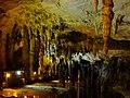 Aggitis river cave (Maaras).jpg