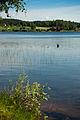 Ala-Juumajärvi.jpg