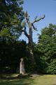 Alsfeld Liederbach Hofgut Oberrod Friedhof.png