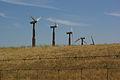 Altamont Pass Wind Farm 2759190384.jpg