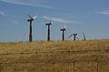 Altamont Pass Wind Farm 2759190384.jpg