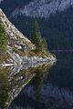 Altausseer See 78909 2014-11-15.JPG