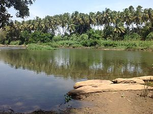 Amaravati River - Image: Amaravathy River Kadathur