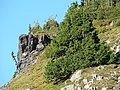 Andesite cliff (c1d8b7c700754ca18803057935d290c8).JPG