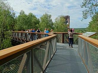 Anykščiai - Anykščiai canopy walkway