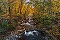 Appalachia Autumn (235138047).jpeg