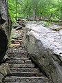 Appalachian Trail Bear Mountain, NY, USA - panoramio (4).jpg