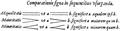 Artis analyticae praxis 1631 – Comparationis signa in sequentibus usurpanda.png