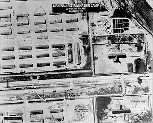 60 Squadron SAAF - Photo of Auschwitz-Birkenau taken by 60 Sqn (Sortie no. 60PR/694) under U.S. Air Force command. The selection process of a recently arrived transport visible on the ramp has been completed, and those selected to die are being taken to Crematorium II. Photo released by the Central Intelligence Agency, 1979.