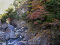 Autumn at Hatonosu Ravine 1.jpg
