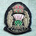 BADGE - Scotland - Scottish National Senior police officer 3 (7980569784).jpg