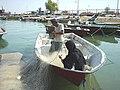 BUSHEHR PORT (11) لنگرگاه صیادی بوشهر.jpg