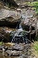 Bachlauf im Nationalpark Bayerischer Wald.jpg