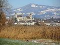 Bachtel - Rapperswil - Seedamm - Hurden 2013-12-01 14-20-07 (P7800).JPG