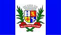Bandeira Carpina PE.jpg