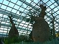 Baobab and Bottle Tree Garden, Flower Dome, Gardens by the Bay, Singapore - 20140513-03.jpg