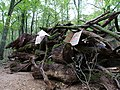 Barrier with protest-signs in the Hambach forest 06.jpg