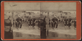 Beach scene and bathers, from Robert N. Dennis collection of stereoscopic views 3.png