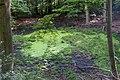 Beetebuergerbësch-102.jpg