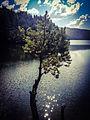 Berovo Lake 2.jpg