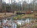 Biberfreianlage inmitten des Lehrpfadsystems des Informationszentrums zum Biosphärenreservat Mittlere Elbe am renaturierten Landeskulturgraben zwischen Dessau und Oranienbaum - panoramio (1).jpg