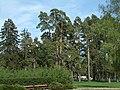 Bila Tserkva, Kyivs'ka oblast, Ukraine - panoramio (67).jpg