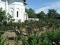 Biserica din Rasa - curtea cu trandafiri.JPG