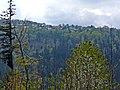 Blick über das Nagoldtal Richtung Grünbach - panoramio.jpg