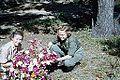 Blomsterglede (1952) (15819421417).jpg