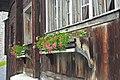 Blumentröge am Walserhaus.jpg