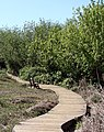 Board Walk, Oak Glen, CA 5-2008 (5898441580).jpg