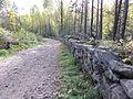 Bogstad Gamleveien ved Strömsbraaten rk 167237 IMG 1870.JPG