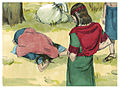 Book of Ruth Chapter 2-5 (Bible Illustrations by Sweet Media).jpg