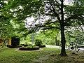 Botanischer Garten Freiburg - DSC06484.jpg