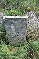 Briceni Jewish Cemetery 42.JPG