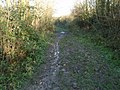 Bridleway To Bar Hill - geograph.org.uk - 1075357.jpg
