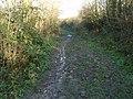 Bridleway To Bar Hill - geograph.org.uk - 1075357.jpg