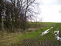 Bridleway going from near Howsham to Scrayingham - geograph.org.uk - 350088.jpg
