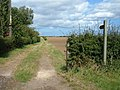 Bridleway towards Sigglesthorne - geograph.org.uk - 1467601.jpg