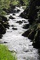 Brilliant waterscenes at the Wera valley along the road from Todtmoos to Wehr - panoramio.jpg