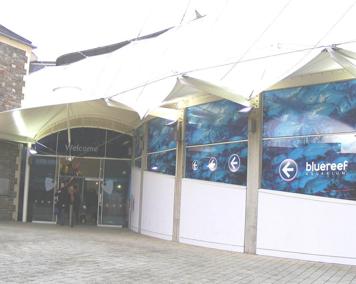 Blue reef aquarium wikidata - Portal entree ownership ...