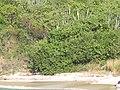 British Virgin Islands - panoramio (3).jpg